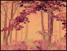 magic forest by lovettInBloom