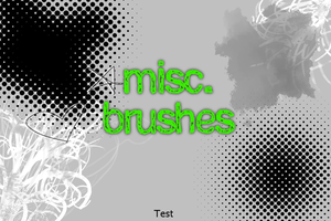 Misc. Paint Shop Pro Brushes by claireone