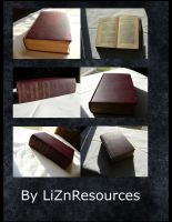 Old Book 2 by LiZnReSources