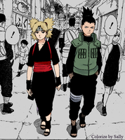 Shikamaru and Temari by SallyInWonderland