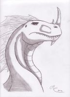 Waleron the White by MidnightWolf95