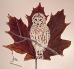 White Owl - painting on leaf by Nekonru