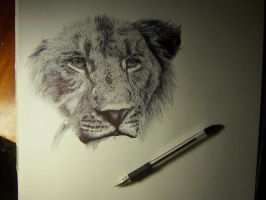 Lion, in a process by Wirraaa