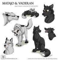 Sketches Matajo and Vaderan by TaniDaReal