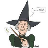 One day, one cutie - 10 McGonagall by DavidRaphet