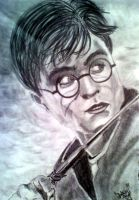 Harry Potter by DanloS