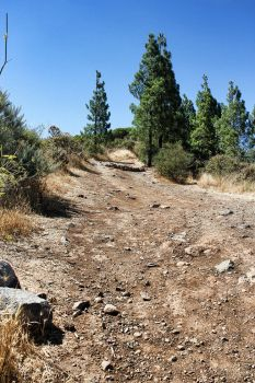 Gran Canaria stoney path by h3design