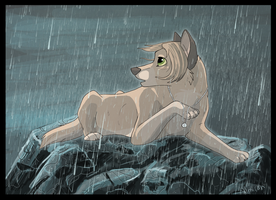 The Storm by Almirah