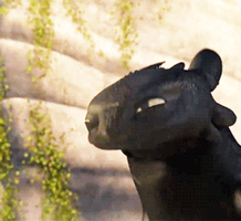 Toothless Gif by littlefox63