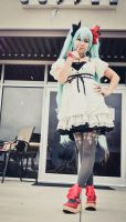 Miku World is Mine V by xposed-photography