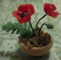 Red Poppies 1:12th Scale by DFLY847