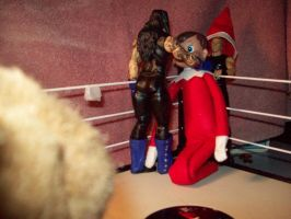 Christmas Tag team Match 2 by Fallonkyra