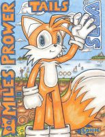 Tails Poster by DragonQuestHero
