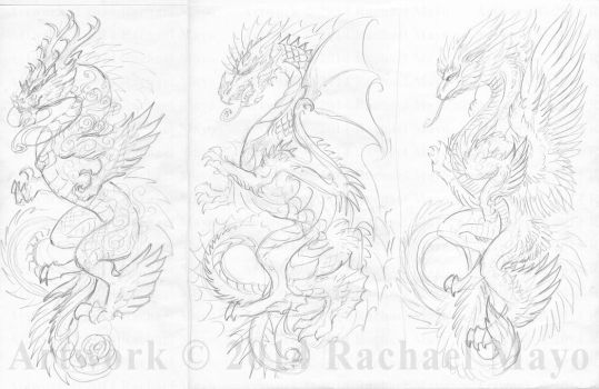 Dragon Tattoo sketches by rachaelm5
