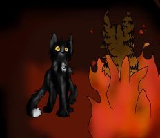 Ravenpaw's nightmare by Spottedfire1212