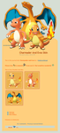 Charmander and Evos Skin by Metterschlingel