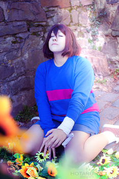 Undertale - The Fall by stormyprince