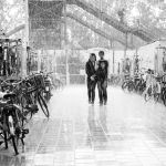 Together with the rain by siddhartha19