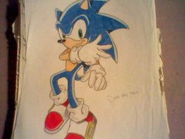 Sonic the hedgehog by SadexTammy
