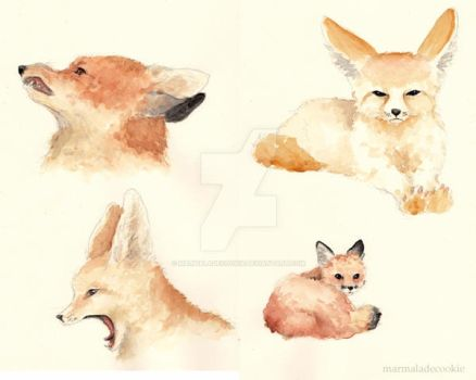 Foxes by Marmaladecookie