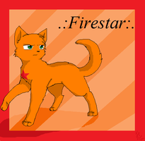 .:firestar:. by anime-animal