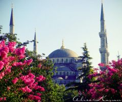 Sultan Ahmed Camii by Kalicen