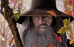 Gandalf by Alizee-P