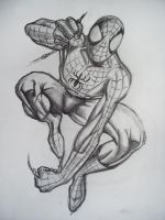 Spiderman 2 by ripperandriy