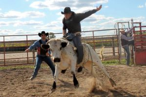 that bull rider by knsmith0110