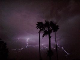 Photography of Lightning 11 by chiggerwood