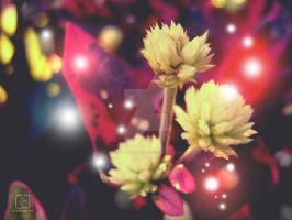 Of Faerie Dust and Blossoms 4 by decayedmatter