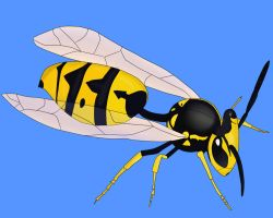 Yellow Jacket Lineart Example by LifeIsToBeHappy
