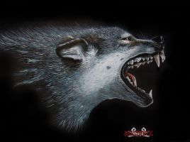 wolf by anestheticolor