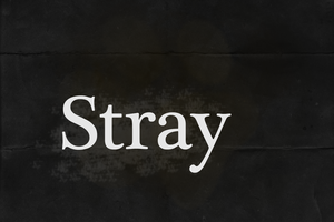 Stray Logo by XSuperkittyX