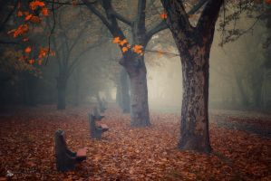 Goodbye by ildiko-neer