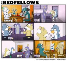The Bedfellows - Bros Will Be Bros (EP#17) by bedfellows