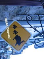 A rabbit sign at Quebec City by Asaciel