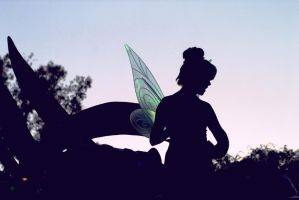 Tinkerbell. by Noitcefni