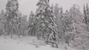 Snowy Lapland by COLT731