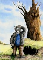 Mr. Badger's Burrow by calzephyr