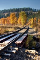 The Tracks to Fall by rdw283