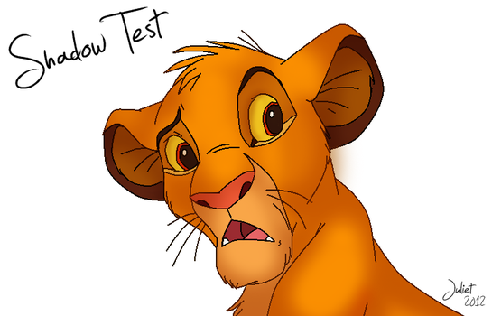 Simba's Shadow Test by hey-swag