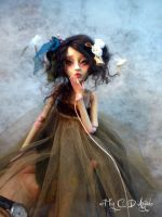 Ball jointed doll doves B by cdlitestudio