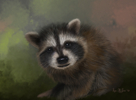 Study of a Baby Raccoon by Sillybilly60
