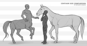 Centaur Size Comparison (Sketch) by FlyQueen