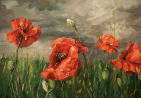 Poppies_2 by MiracleAyano