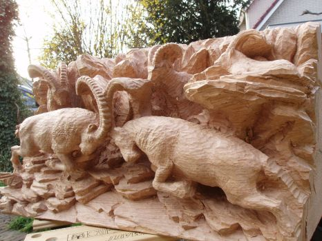Alpine Ibex in progress12 by woodcarve