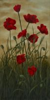 Poppies by VivalaVida