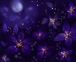 Night flowers by Enshi-D
