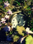 Clock. by shimahi